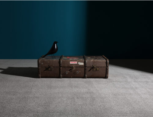 THE VANGUARD COLLECTION NOW OFFERS CHOICES IN COLOUR AND PILE HEIGHT